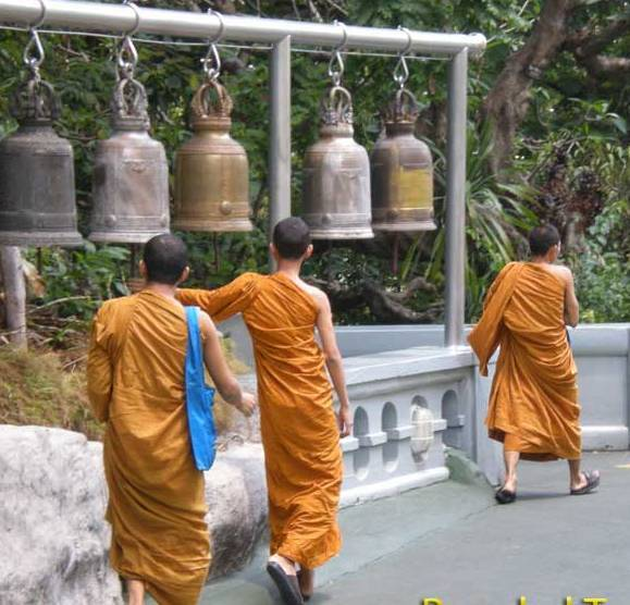 Chiang Mai monastery in northern Thailand for about a year.