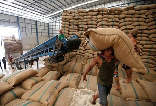 Warehouses have almost a two-year export supply or rice, but more supplies arrive constantly, fresh from the fields.