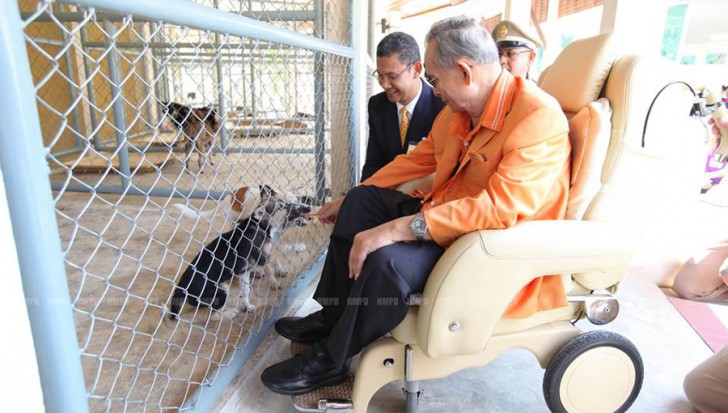 Hua Hin Dog Shelter was initiated by the King in 2003