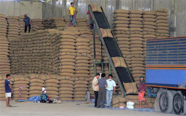 Rice from neighbouring countries like Vietnam, Cambodia, and Myanmar also landed in Thai warehouses through unholy nexus of the farmers and middlemen looking to earn a fortune