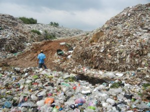 80,000 tonnes of the total waste quantity is plastic bags