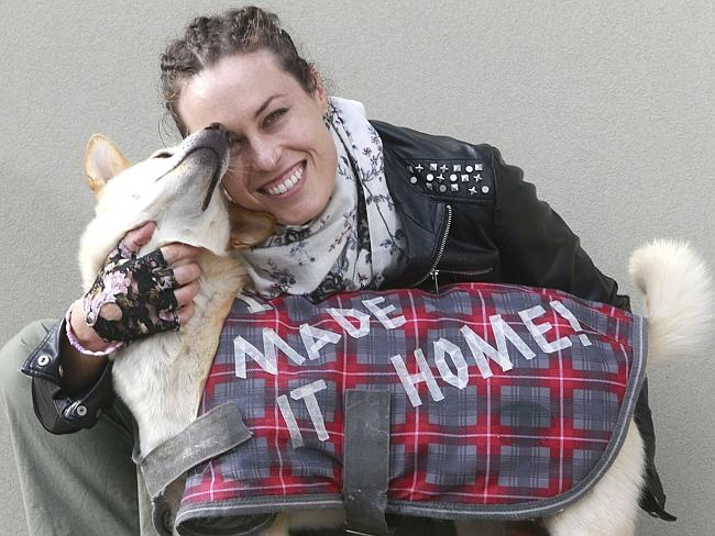 Joanna Sherwell visits GAWS with her adopted Thailand dog Sunny. Pic: Alison Wynd