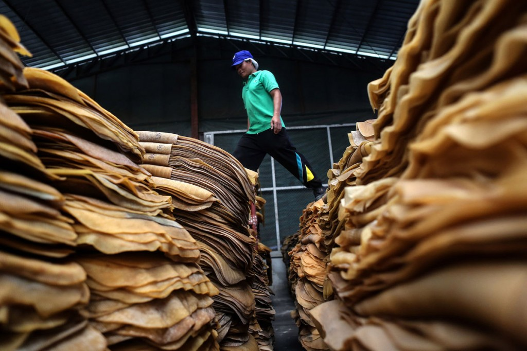 Rubber's bear market is poised to deepen as the global supply glut stretches into a fourth year and stockpiles in Thailand swell