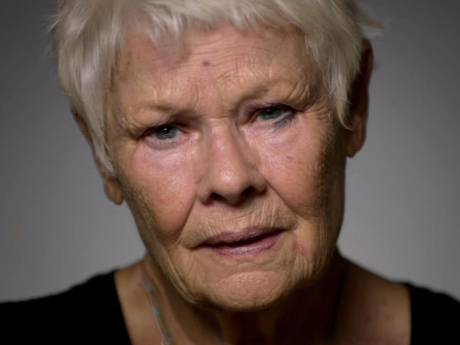 Dame Judi Dench joined the Soi Dog Foundation campaign