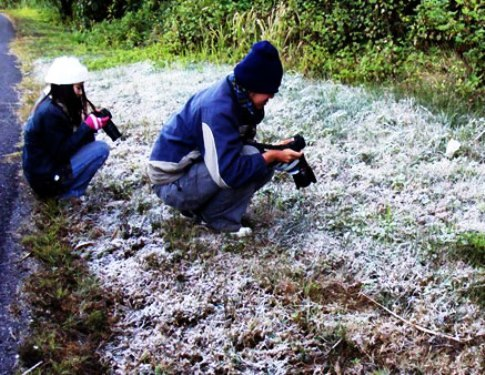 Students take photo's of frozen grass in Chiang Rai