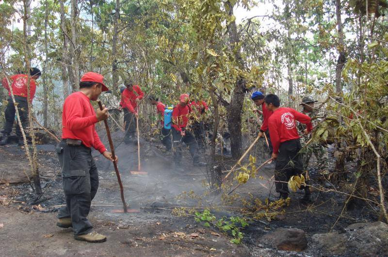 Crews Douse fires in National Park
