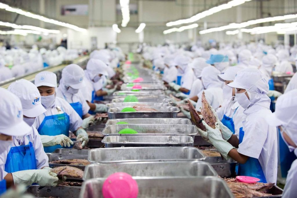 Workers process skipjack tuna at a Thai Union Frozen Products packaging plant in Samut Sakhon, Thailand,