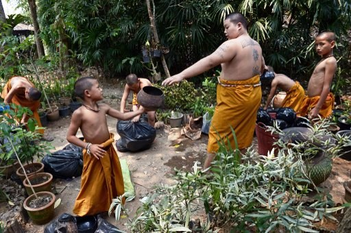 """TO GO WITH Thailand-religion-drugs-social,FEATURE by Marion THIBAUT This picture taken on April 8, 2015 shows Buddhist novices taking part in daily chores at the """"Temple of the Golden Horse"""" in Mae Chan, in Thailand's northernmost Chiang Rai province, part of the Golden Triangle region. Every morning in Thailand's far north, a convoy of orange-robed Buddhist monks and novices riding on horseback leaves their mountain-top temple in the kingdom's notorious Golden Triangle region to collect alms. The equestrian ascetics are part of a drive to help young boys in this drug-ravaged region escape addiction through horses, Thai boxing and meditation. AFP PHOTO / Christophe ARCHAMBAULT"""