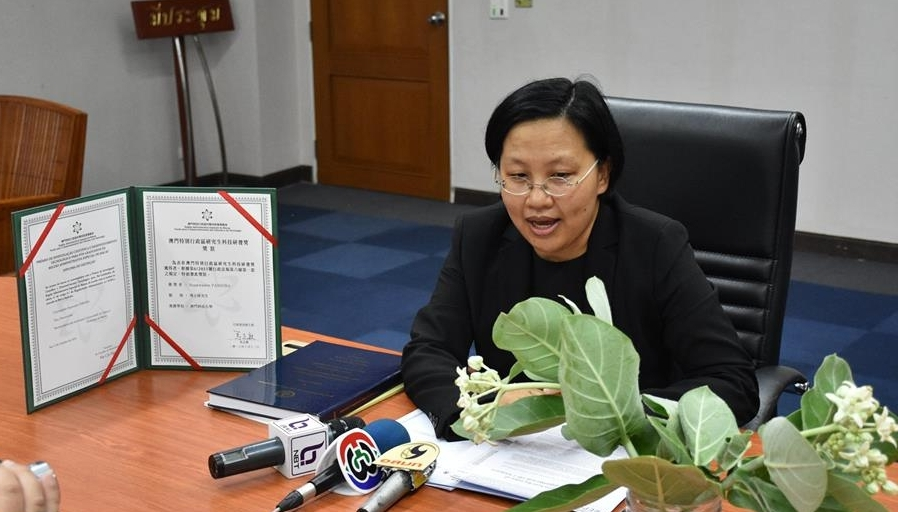 Dr Supawadee said that this research work would pave the way for the search of new medicines for the treatment of certain ailments