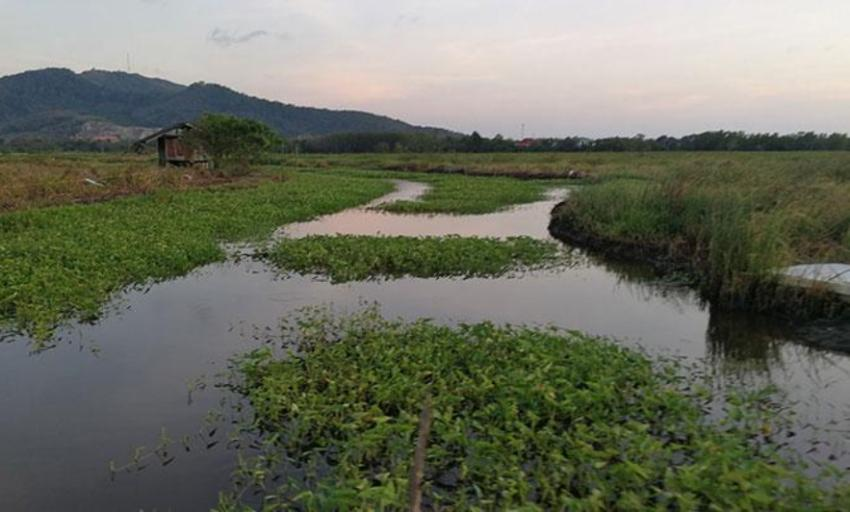 canal southern Thailand