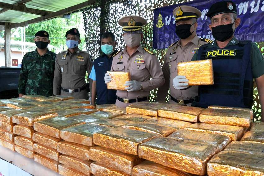 Growing, Marijuana, Thailand